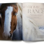 Issue Five No Home on the Range