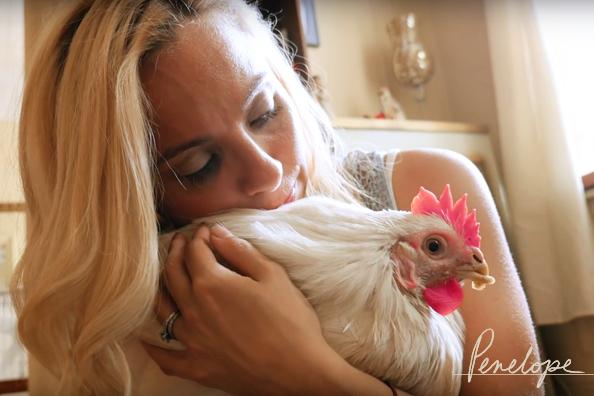Penelope Kaporos Chicken