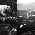 LAIKA Issue Seven-Last Place on Earth