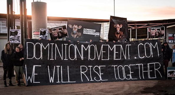 dominion animal rights protest